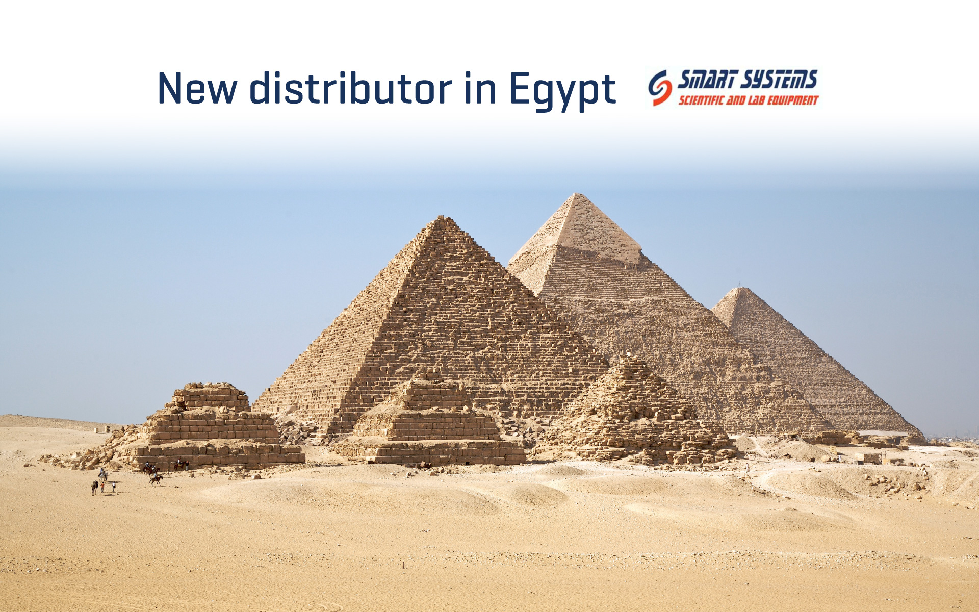 We have a new distributor from Egypt